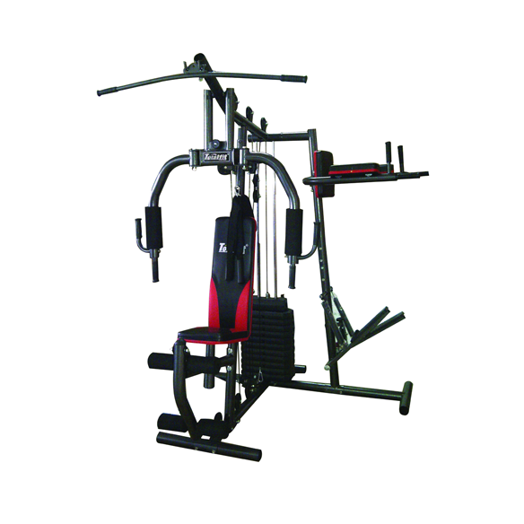 homegym2sisistepper